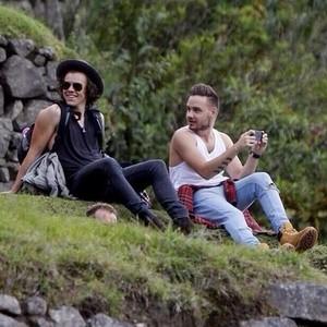 Liam and Harry - Machu picchu