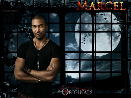 The Originals wallpaper titled Marcel