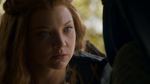 Margaery Tyrell Hintergrund containing a portrait called Margaery Tyrell