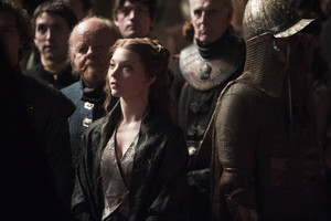 Margaery and Mace Tyrell Season 4