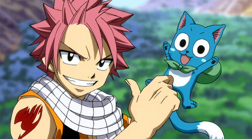 fairy tail fondo de pantalla with anime entitled Natsu and Happy