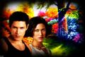 Paul  - twilight-couples wallpaper