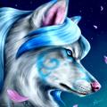 Pretty aqua wolf