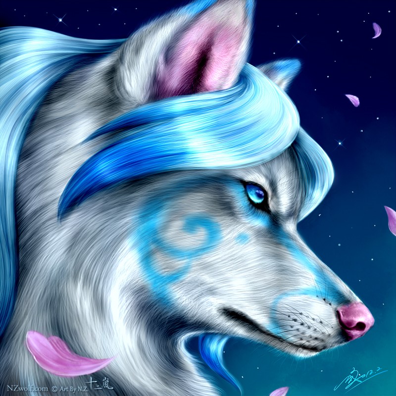 wolves images pretty aqua wolf hd wallpaper and background photos
