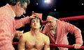 Rocky!