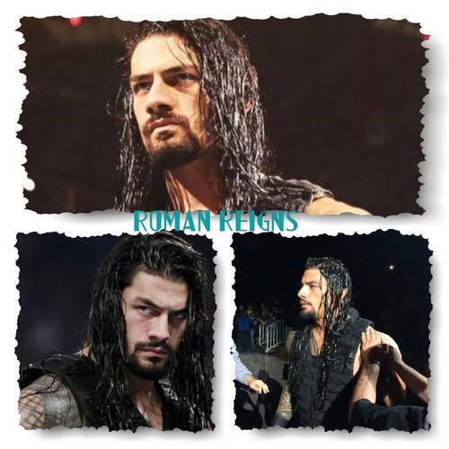 The Shield (WWE) wallpaper with a portrait titled Roman Reigns