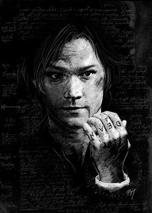 Sam Winchester ♢