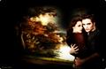 Serenity - twilight-couples wallpaper