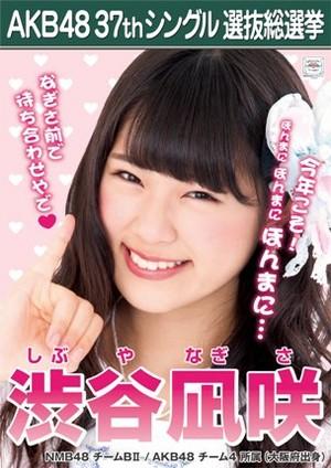 Shibuya Nagisa 2014 Sousenkyo Poster