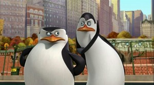 Skipper and Kowalski.