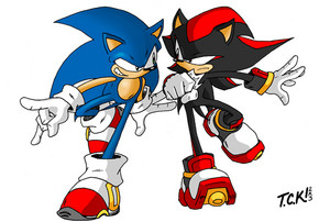 Sonic .vs. Shadow: Racing