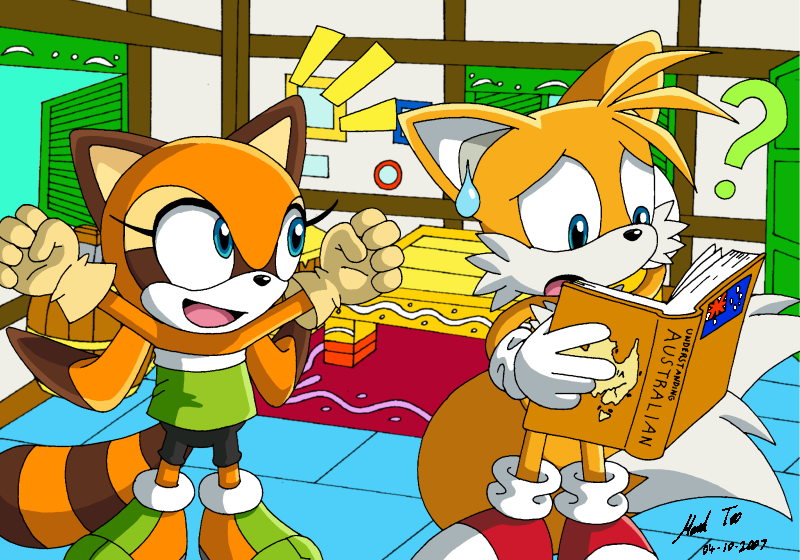 Sonic Rush Images Tails And Marine Hd Wallpaper And Background