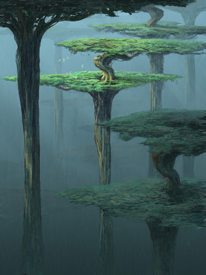 Tall Forest