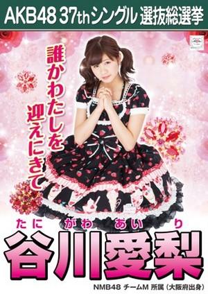 Tanigawa Airi 2014 Sousenkyo Poster