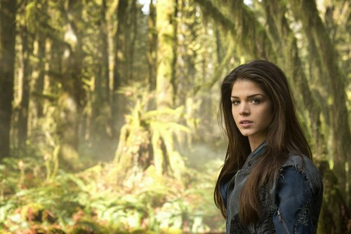 100 (Сотня) сериал Обои possibly with a douglas fir, a sitka spruce, and a ponderosa entitled The 100 Cast Promos