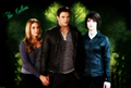 twilight-series - The Cullen's wallpaper