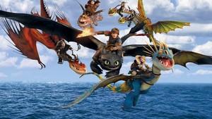 The dragon team3
