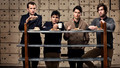 vampire-weekend - Vampire Weekend Wallpaper wallpaper