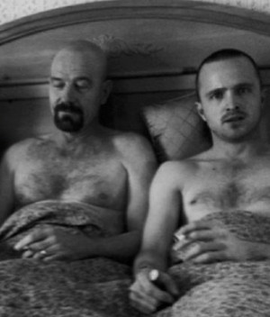 Walt and Jesse :D