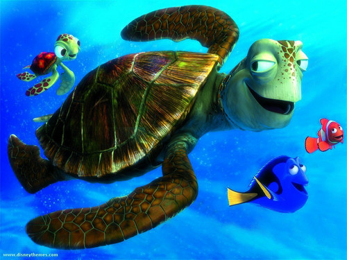 Finding Nemo achtergrond containing a green turtle, a hawksbill turtle, and a sea schildpad entitled finding nemo
