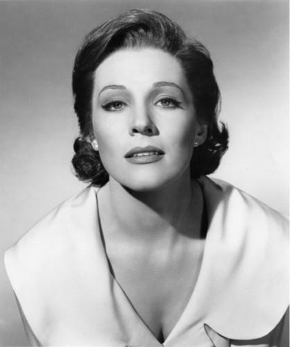 Julie Andrews hình nền containing a portrait titled julie andrews