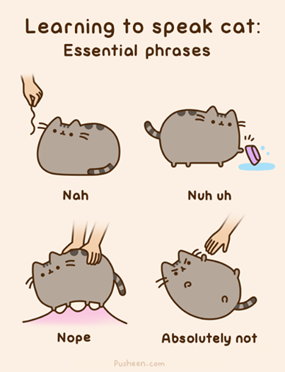 learning to speak cat - Pusheen the Cat Photo (37087779) - Fanpop - Page 10
