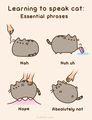 learning to speak cat - pusheen-the-cat photo