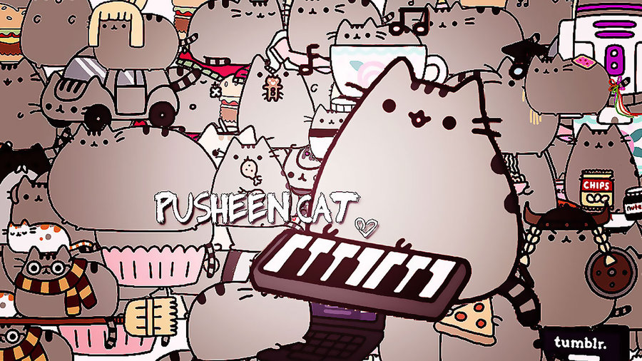 pusheen the cat images pusheen cat hd wallpaper and background