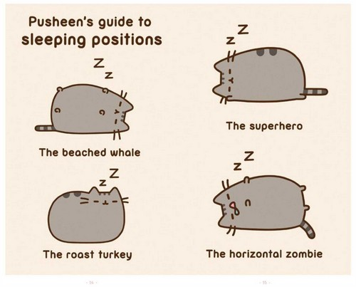 Pusheen The Cat Wallpaper Called Pusheen Guide To Sleeping Postions
