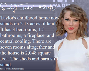 taylo facts