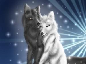 wolfs nuzzles
