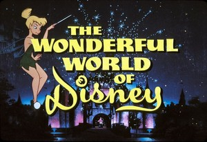"""The Wonderful World Of Disney"" Logo"