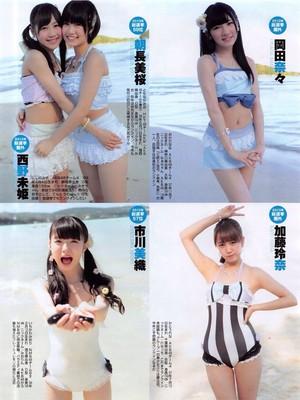 AKB48 Labrador Retriever