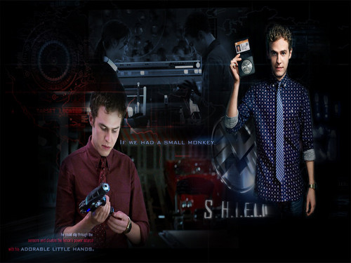 Agents of S.H.I.E.L.D. wallpaper probably containing a show, concerto and a sign titled Agent Fitz ☆