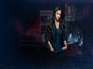 Agent Skye ☆