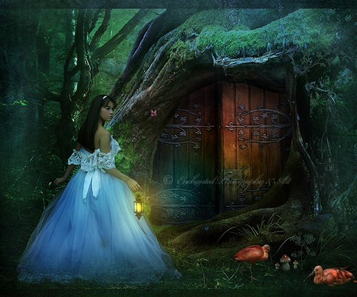 Alice In Wonderland Fanpop: Daydreaming Images Alice In Wonderland Wallpaper And
