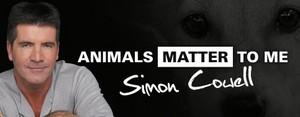動物 Matter