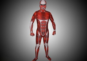Attack on Titan Colossal Titan costume