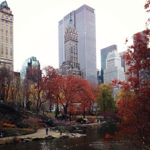 Autumn In New York's Central Park