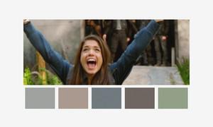 Color Palettes The 100
