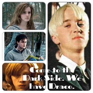 Come to the Dark Side. We have Draco
