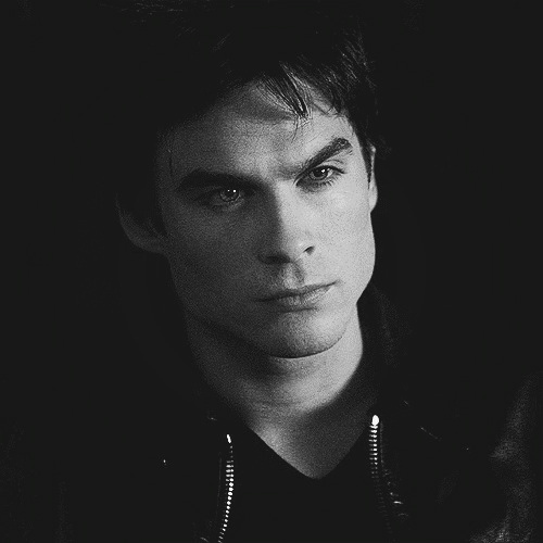 Damon Salvatore پیپر وال probably containing a portrait called Damon