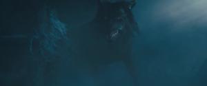 Diaval as a lobo