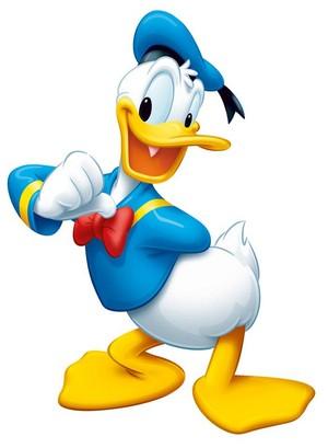 Donald bata