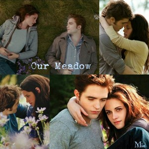 Edward and Bella's Meadow