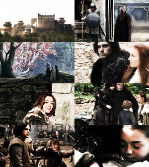 GoT AU: After the war all the remaining Starks meet in Winterfell