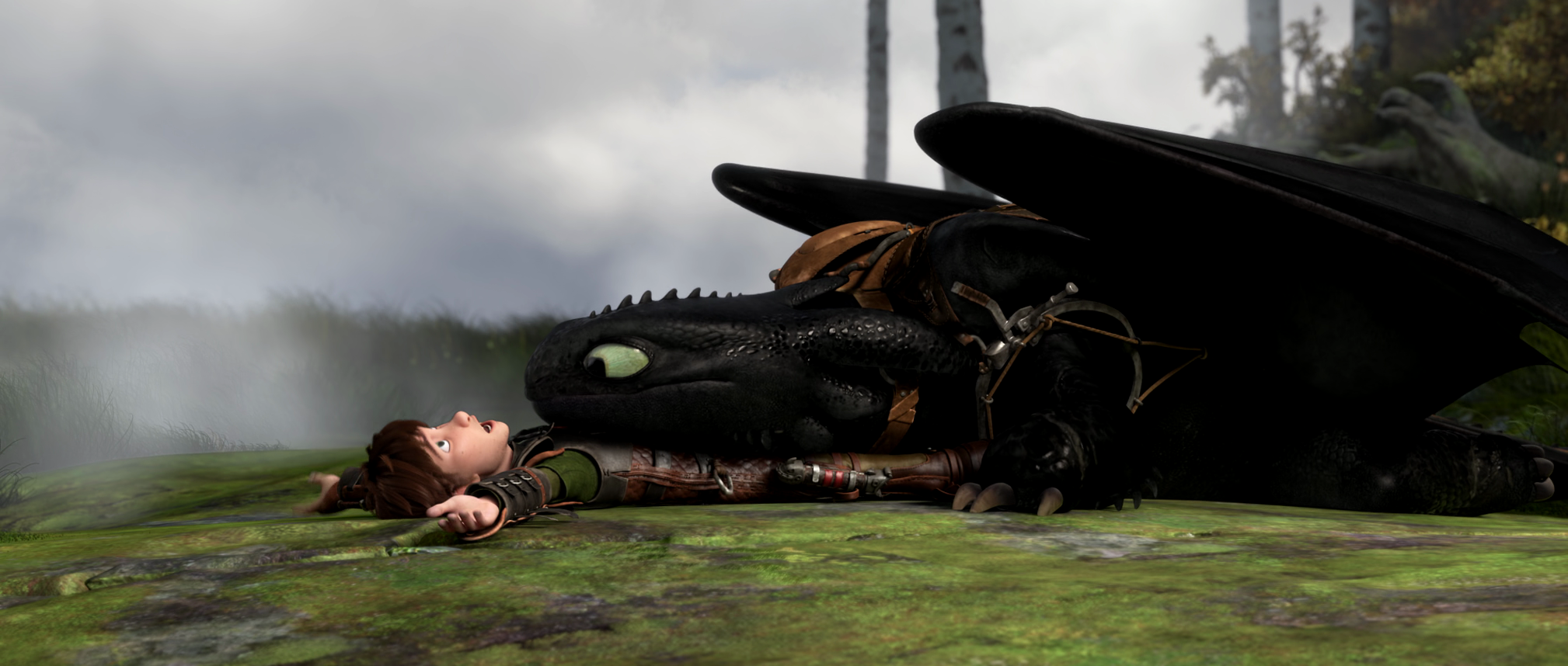 HTTYD 2 - Hiccup and Toothless - How to Train Your Dragon ...