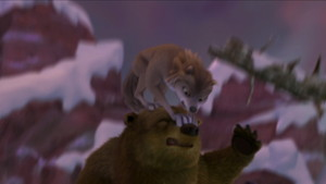 Kate hates bears.