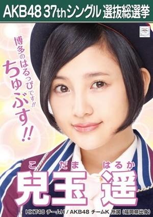 Kodama Haruka 2014 Sousenkyo Poster