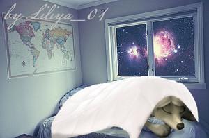 Lilly sleeps